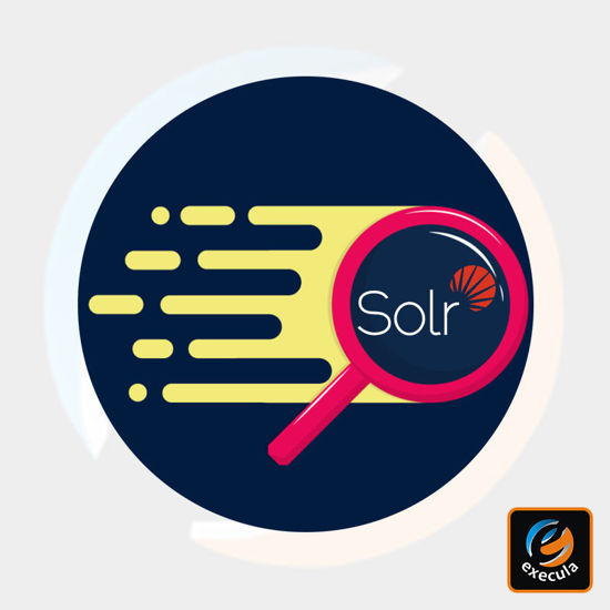 Solr Search